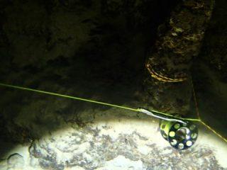 久米島海底洞穴